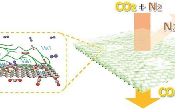 Source: © Kumar Agrawal/EPFL  Scientists have made polymer-functionalised single-layer graphene membranes that surpass the postcombustion carbon capture target